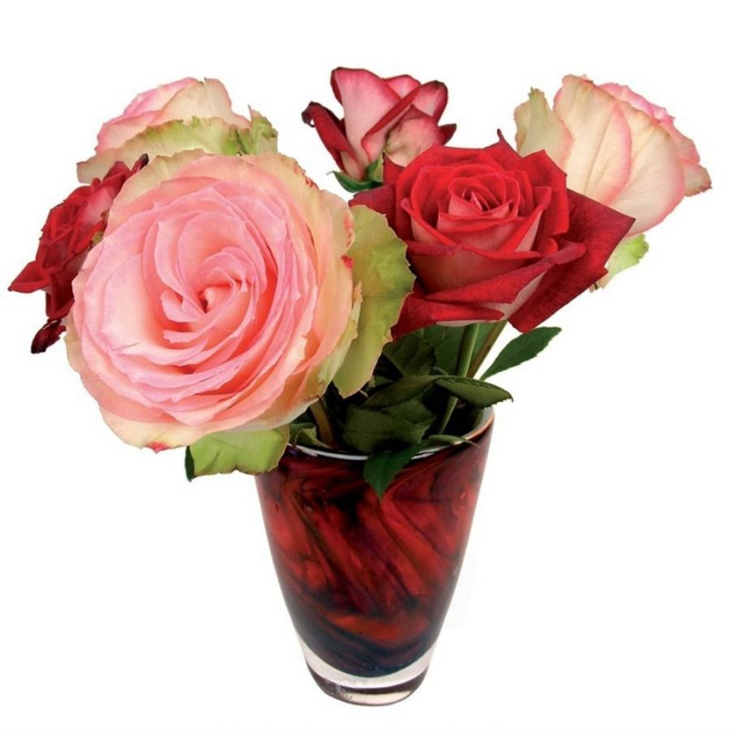Flat Flower Raamsticker - Rood Roze Rozen