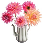 Flat Flowers - Originals Raamstickers Dahlia in koffiepot