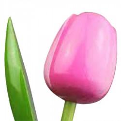 RozeWit - Boeket Houten Tulpen