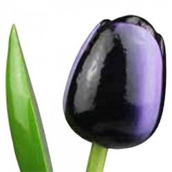 AubergineWhite - Bunch Wooden Tulips