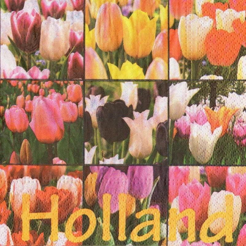 Tulips Napkins - Color