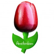 Tulip Magnets Red White - Wooden Tulip Magnet 9cm