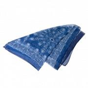 Transparante blauwe Sjaal