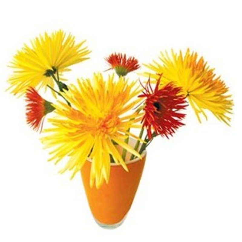 Flat Flower - Yellow Chrysanteum