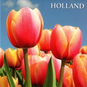 Tulips Holland - Flat Magnet