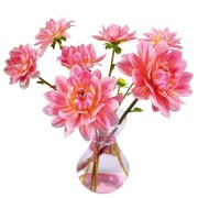 Flat Flowers - Originals Window Stickers Dahlia Pink