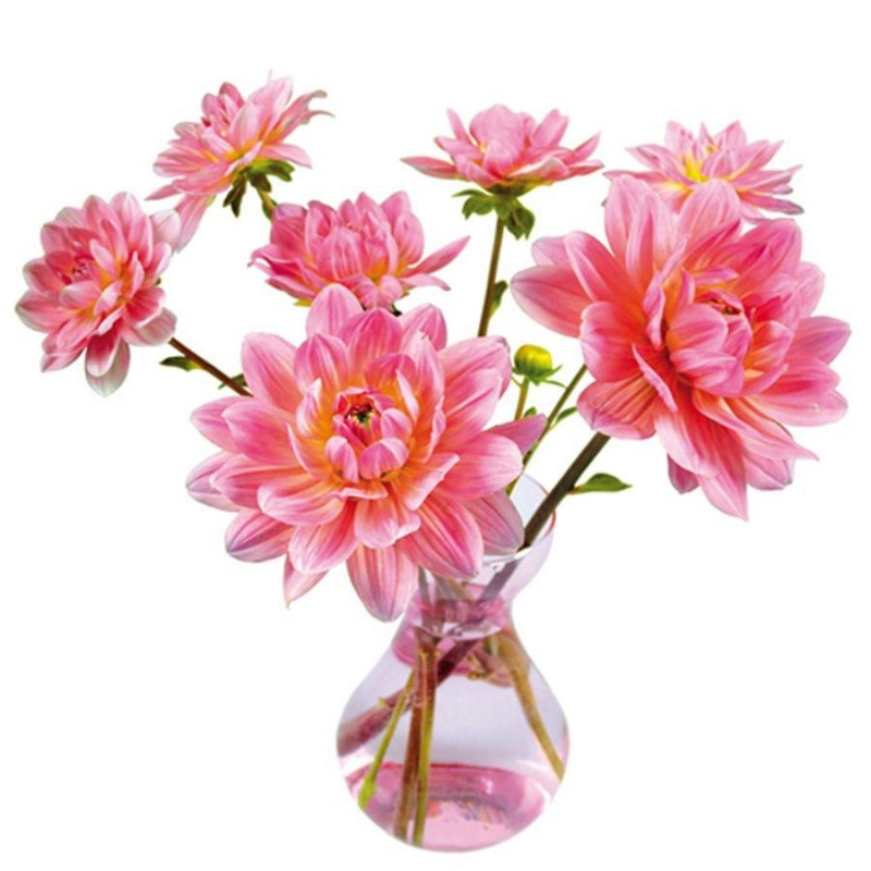 Flat Flowers - Originals Window Stickers Dahlia Pink