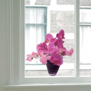 Flat Flower - Orchid Pink