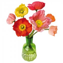 Flat Flowers - Originals Raamstickers Papaver