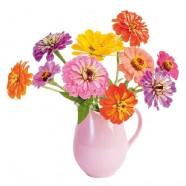 Flat Flower Raamsticker - Zinnia in frisse kleuren