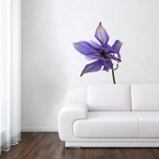 Wall Stickers - Wanted Wheels - Flat Flowers Aquilegia - Wall Sticker