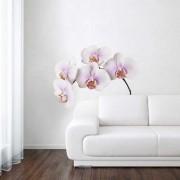 Muurstickers - Wanted Wheels - Flat Flowers Orchidee Wit - Muursticker