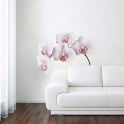 Wall Stickers - Wanted Wheels - Flat Flowers Orchid White - Wall Sticker