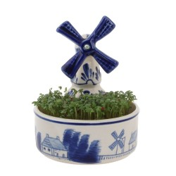 Bloempotjes - Delfts Blauw • Souvenirs from Holland