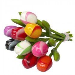 Wooden Tulips - Souvenirs • Souvenirs from Holland