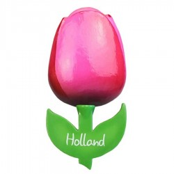 Tulips - Magnets | Souvenirs From Holland