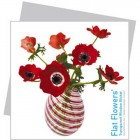 Flat Flowers - Greetings Cards
